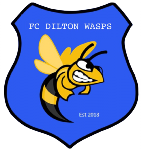 Dilton Wasps Football Club logo
